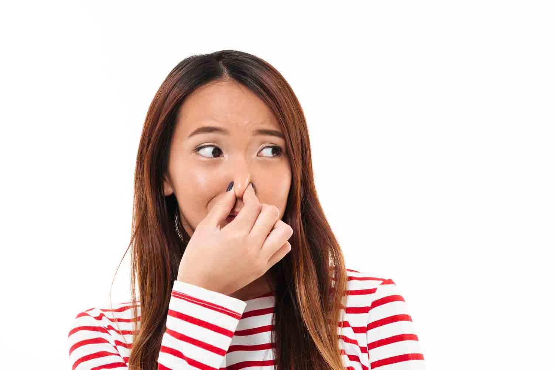 Le ballonnement est dû aux gaz intestinaux, appelés communément pets